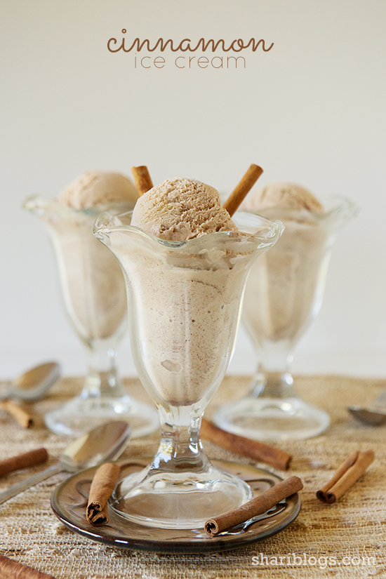 Cinnamon Ice Cream - Shari Blogs...all things simple & delicious!