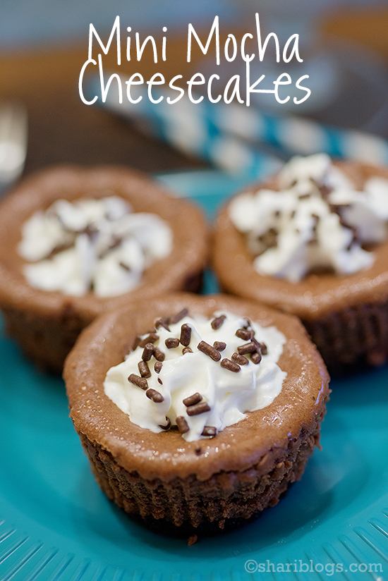 Mini Mocha Cheesecakes | www.shariblogs.com